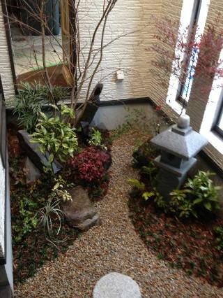 おうちの中の坪庭スペースも耐陰性樹種で綺麗に彩ります。